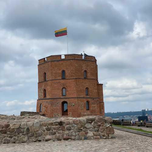 Башня Гедимина<br/> <br/> Западная башня Верхнего замка, построенного в 1419-22 гг. при Витовте. Прежде её строительство ошибочно приписывалось его деду Гедимину.<br/> <br/> Расположена в западной части Замковой горы, находящейся в историческом центре города и возвышающейся на 48 м от подошвы (143 метра над уровнем моря). Башня в три этажа восьмиугольной формы (нижняя часть четырёхугольная), высотой 20 м, сложена из нетесаного бутового камня и красного кирпича. Над башней на флагштоке развевается государственный флаг. Со смотровой площадки наверху открывается вид на Старый город и долину Вилии.<br/> <br/> Подняться к башне по Замковой горе можно пешком, по проложенной в 1895—1896 годах спиралевидной дорожкой по склону горы, либо (платно) на фуникулёре. С башней на Замковой горе соседствуют развалины Верхнего замка — фундамент южной башни и фрагмент оборонительной стены.