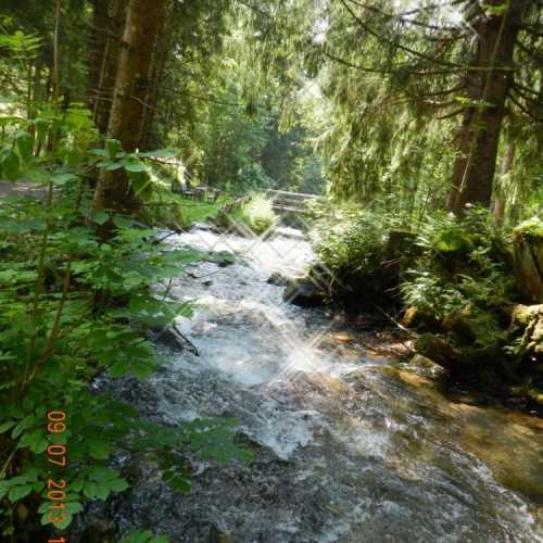 Альпийский ручей