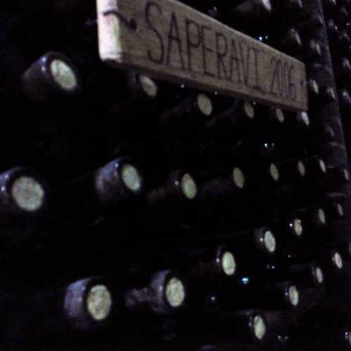 Вино )))