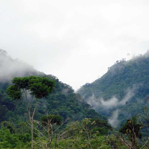 Аталайя, Peru