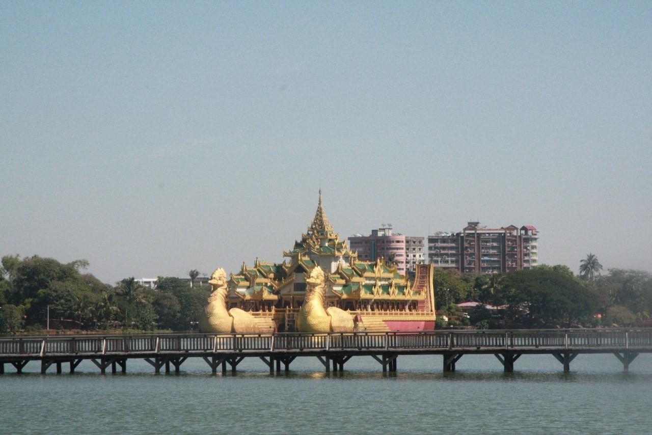 станет елена саратов фото мьянма пруда оборудован навесами