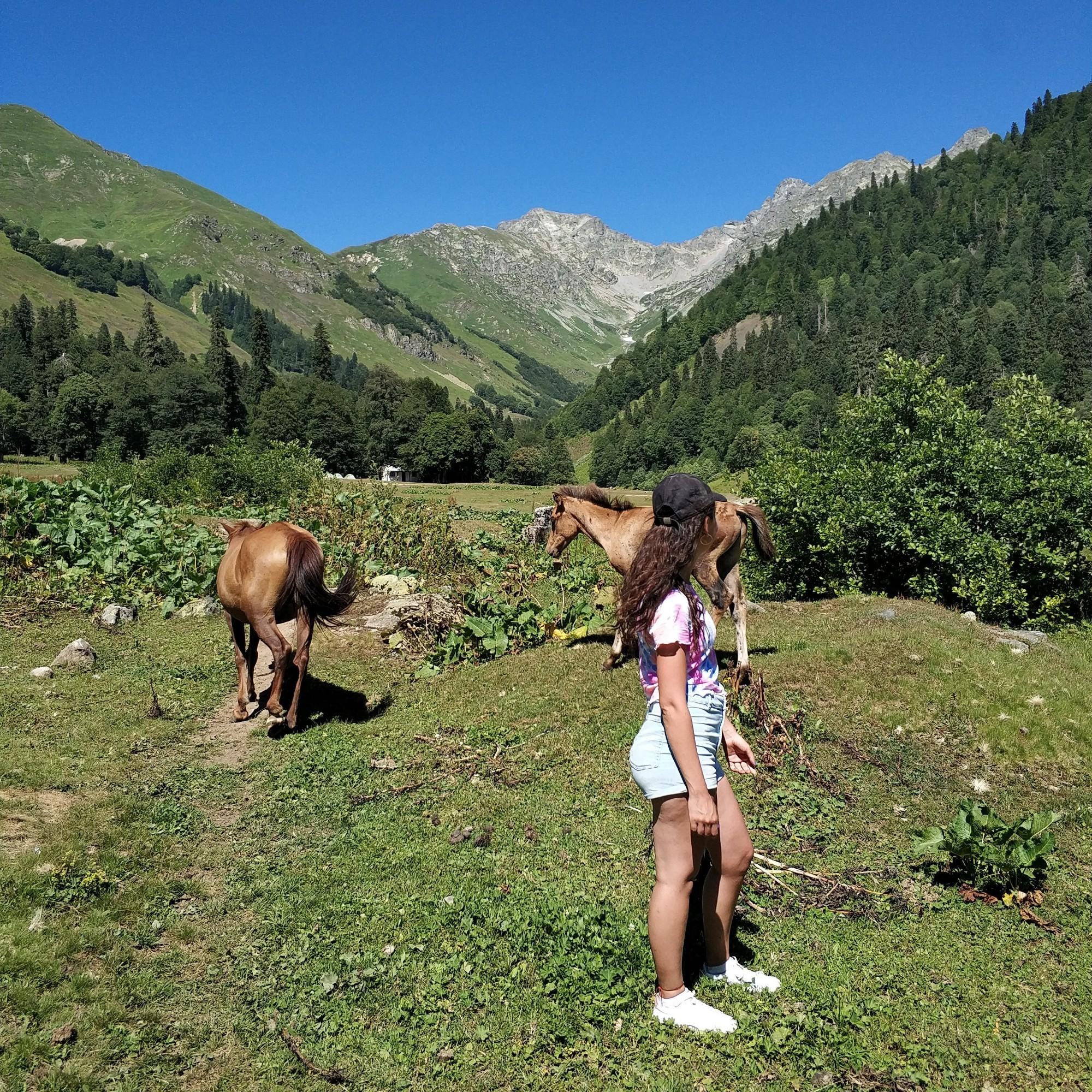 15 августа 2019<br/> В Альпийских лугах животных было больше, чем людей. Тихо, спокойно и дышится свободно