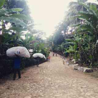 Мое путешествие по Гаити.
