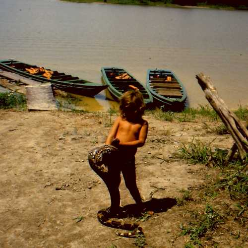 Amazonas. The baby and the snake.