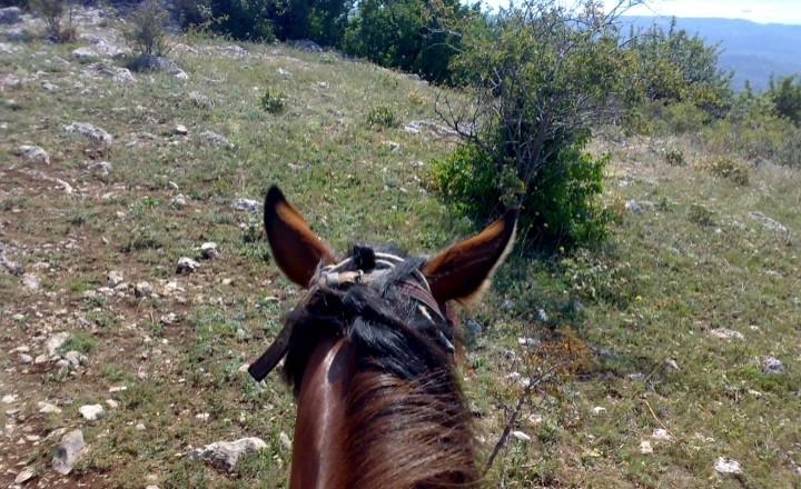Путешествие на гору Демерджи.