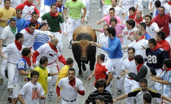 Спасение от рогов быка - бегство!