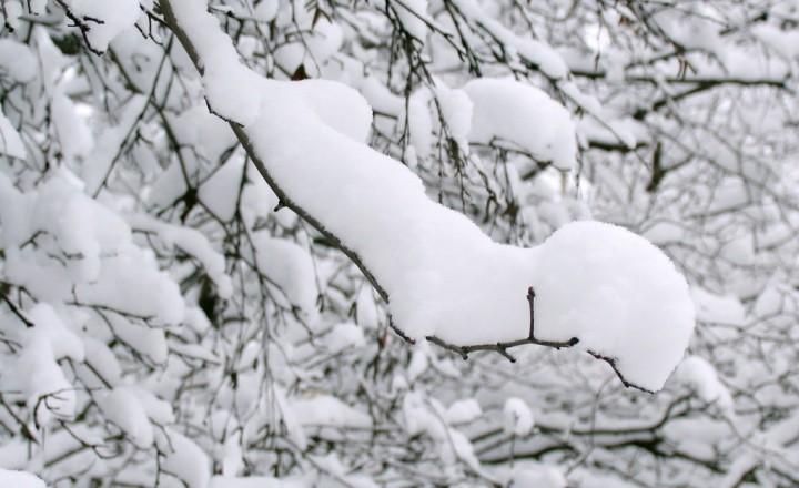 Много снега для Ольки и Вовки
