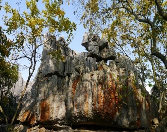 Каменный лес, Шилин