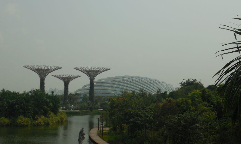 Сингапур!!! день второй - сады Gardens by the Bay